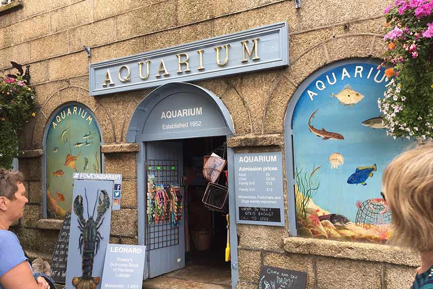 Top 10 attractions in Fowey - Aquarium