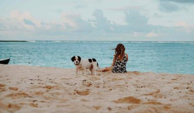 Dog Friendly beaches in Cornwall
